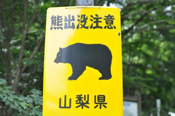 大菩薩熊出没注意