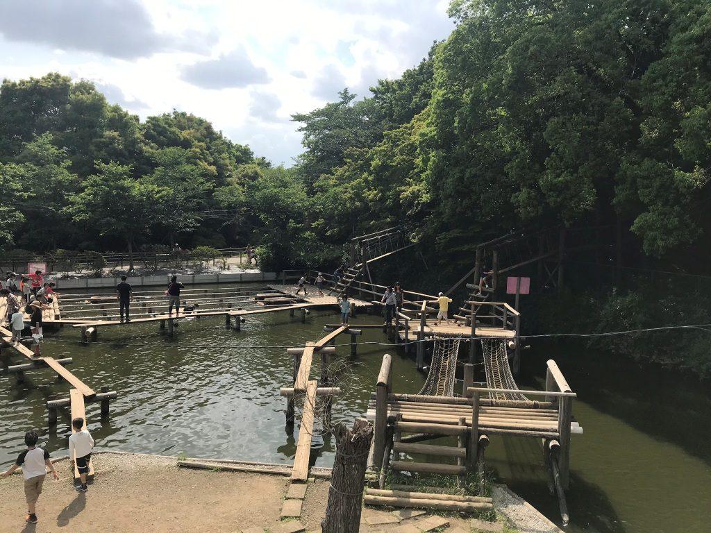 清水公園の水上アスレチック