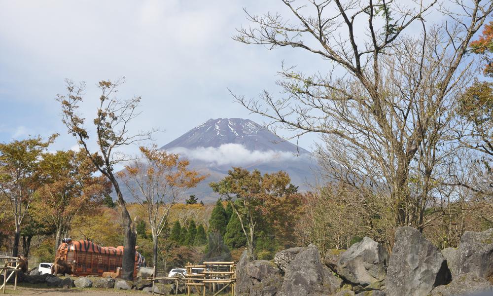 富士サファリパークから富士山が見える